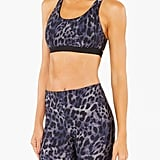 Koral | Tax Cheetara Sports Bra