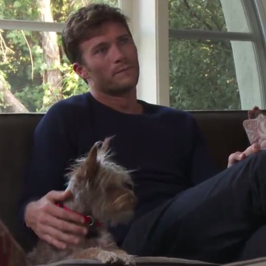 The Bachelor With Dogs Funny or Die Video