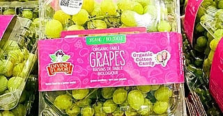 Costco's Selling Cotton Candy Grapes Again! Get Your Hands on Them Before It's Too Late