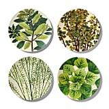John Derian Leaf-Print Melamine Dinner Plate Set