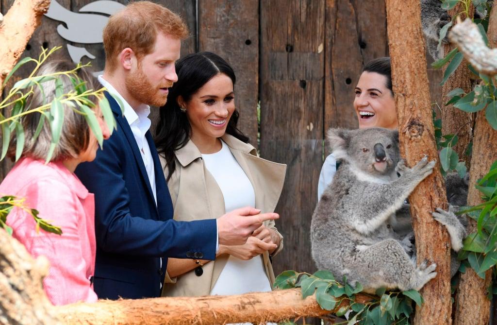 Prince Harry and Meghan Markle With Koala Taronga Zoo