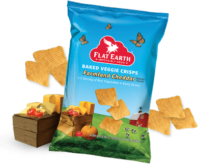 Flat Earth Chips