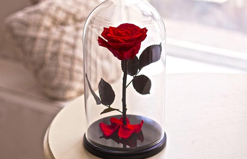 Rose In Glas : beauty and the beast home decor popsugar home ~ Frokenaadalensverden.com Haus und Dekorationen