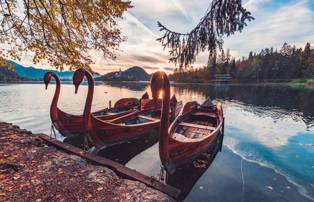 Go paddleboating or canoeing.