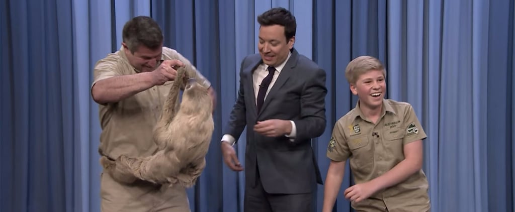 Robert Irwin Takes After His Dad and Appears on The Tonight Show With a Few Wild Animals