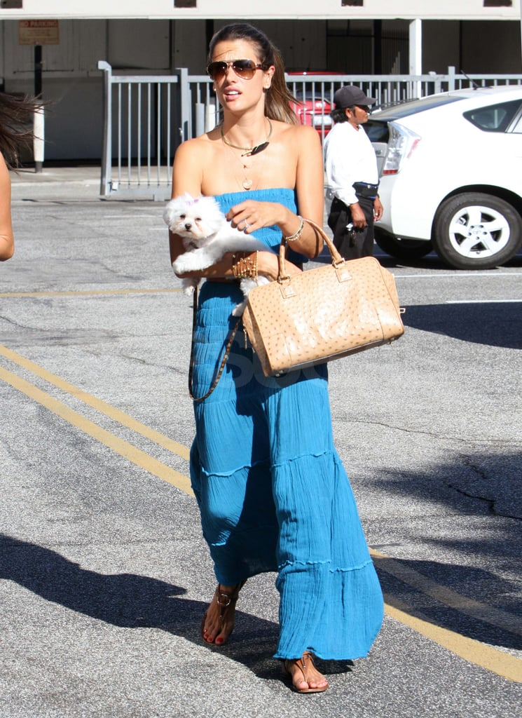 Alessandra Ambrosio and her dog in LA.