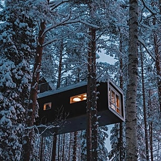 Treehotel in Sweden Photos