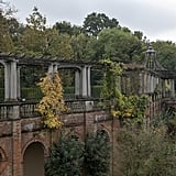 Hampstead Heath's Edwardian Pergola Trail and Hill Garden (Camden)