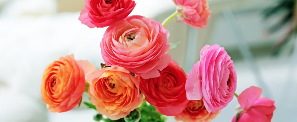 Dad Gave Mum Flowers After Divorce