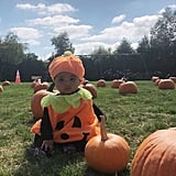True Thompson as a Pumpkin