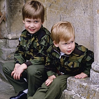 Prince William and Prince Harry Pictures