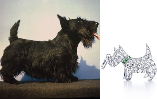 Trend Setters: Scotties
