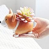 Animal-Shaped Succulent Vase