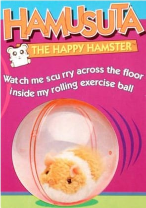 Hamusuta Hamster