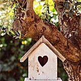 Build a birdhouse.