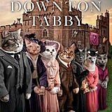 Downton Tabby ($9)