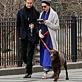 Anne Hathaway and Adam Shulman took their dog for a walk in NYC.