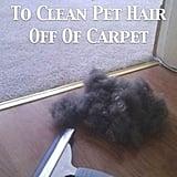 Pet Hair Hack