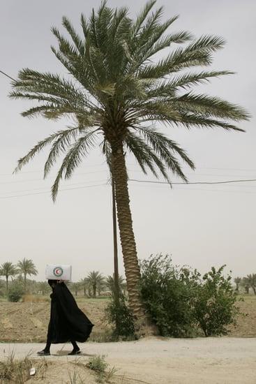 Women Want to be in al Qaeda