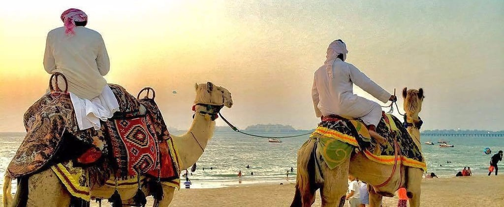 The Painless Guide to Hosting Visitors in Dubai
