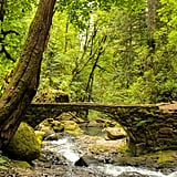 If you're seeking true tranquility, well, my friend, you're in luck as there are countless trails outside of Portland waiting to be explored. Let your soul be buoyant and free as you get lost — figuratively not literally! — in gorgeous lush pockets of the forest and reconnect with nature.