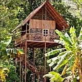 Rapunzel's Tree House (Tangled)