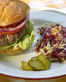 Fast & Easy Gourmet Recipe For Turkey Burgers