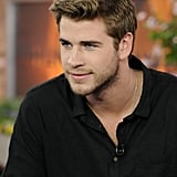 Liam Hemsworth plays the role of Gale in The Hunger Games.