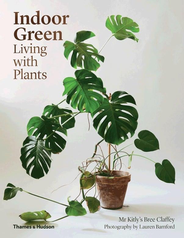 Sheridan Indoor Green Living With Plants ($49.99)