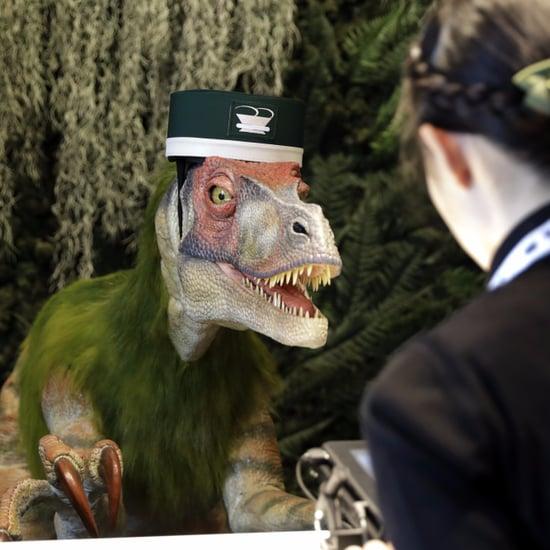 Robot Dinosaur Hotel