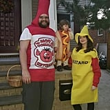 Hot Dog, Ketchup, and Mustard
