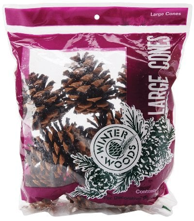 Winter Woods Ponderosa Pine Cones, 8 Pack