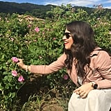 Picking May Roses in Action