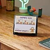 2020 Garfield 365-Day Desk Calendar