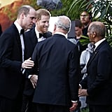Harry, William, and Charles at Our Planet Premiere 2019