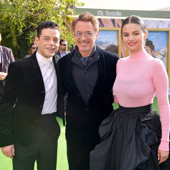 Celebrities at the Dolittle Premiere in LA | Pictures