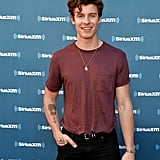 Hot Pictures of Shawn Mendes