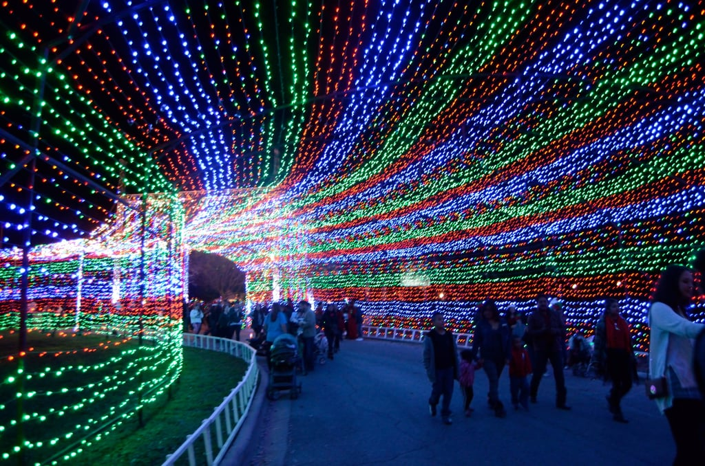 the 10 most spectacular holiday light displays across america - Holiday Christmas Lights