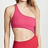 Stella McCartney Colorblock One Piece