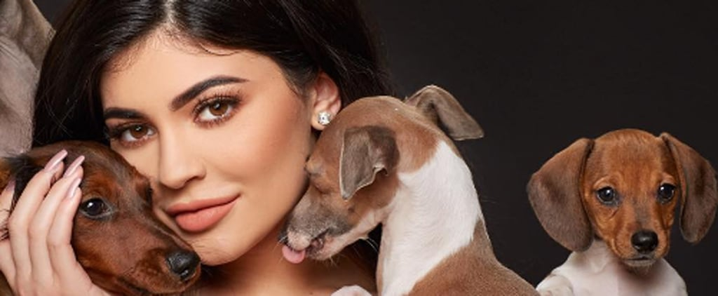 Kylie Jenner's Dogs on Instagram