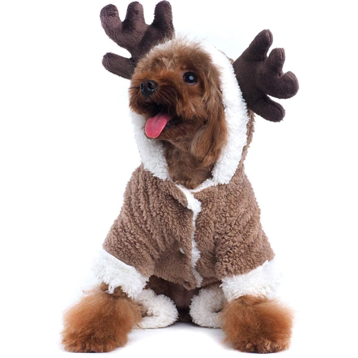 Cutest Dog Christmas Pajamas Popsugar Family