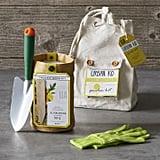 Urban Kid Sunflower Garden Kit