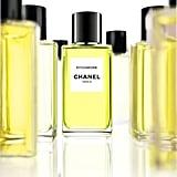 Chanel Sycomore Fragrance