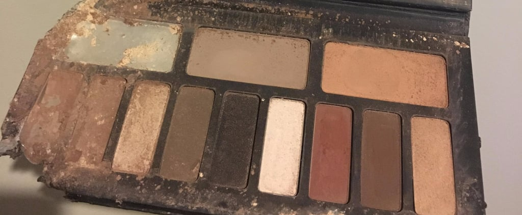 This Dog Ate a Kat Von D Palette, and Now My Soul Hurts