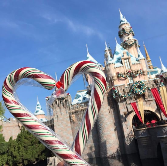 When Will Disneyland Have Candy Canes This Year?