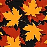 Autumn by Skltwn