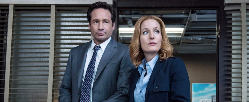 The X-Files Reboot Season 2 Details