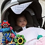 Stormi Webster Pictures