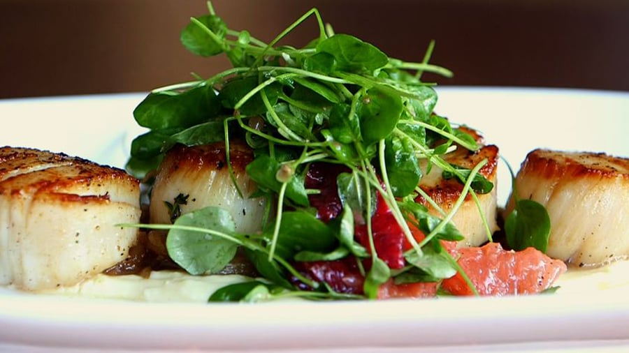 Seared Scallops With Parsnip Puree