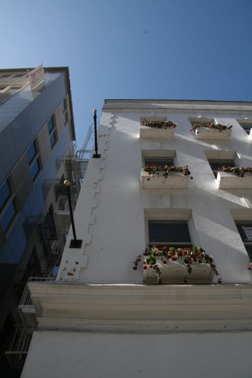 Do You Have Window Boxes on All Floors?